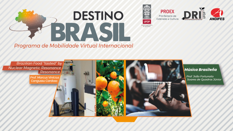 Banner CAINT/PROEX/ANDIFES - Destino Brasil